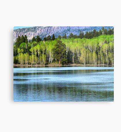 Yankee Lake 1 Metal Print