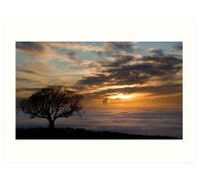 Foggy View Art Print