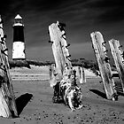 Lighthouse and Groynes at Spurn Point by Jon Tait