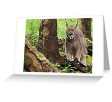 The Lynx Greeting Card