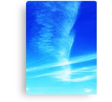 Feather in the Sky Canvas Print