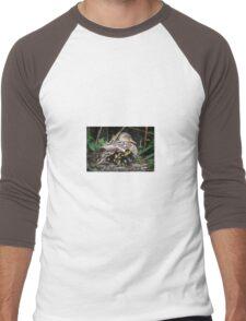Mother Mallard and her Chicks Men's Baseball ¾ T-Shirt