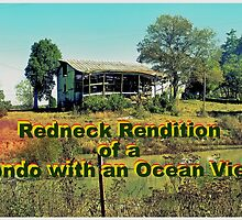 """Redneck Rendition of a Condo with an Ocean View""... prints and products by © Bob Hall"