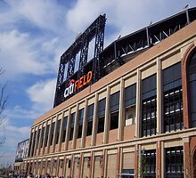 CitiField 1 by Annie Marcelino