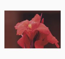 Red Canna Lilies Baby Tee