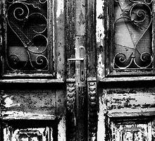 old wooden door by halina1601
