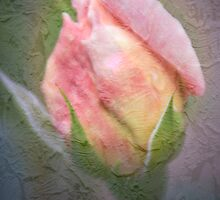 First Rose by Mary Ann Reilly