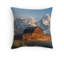 Bison at barn Throw Pillow