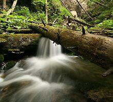 mountain creek by matkowski