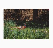 Pheasant in the Bluebells Kids Clothes