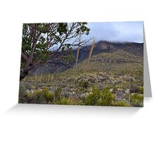 Rolling Fog in McKittrick Canyon Greeting Card