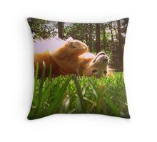 Dog is my co-pilot Throw Pillow