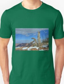 Grand Canyon 12 T-Shirt