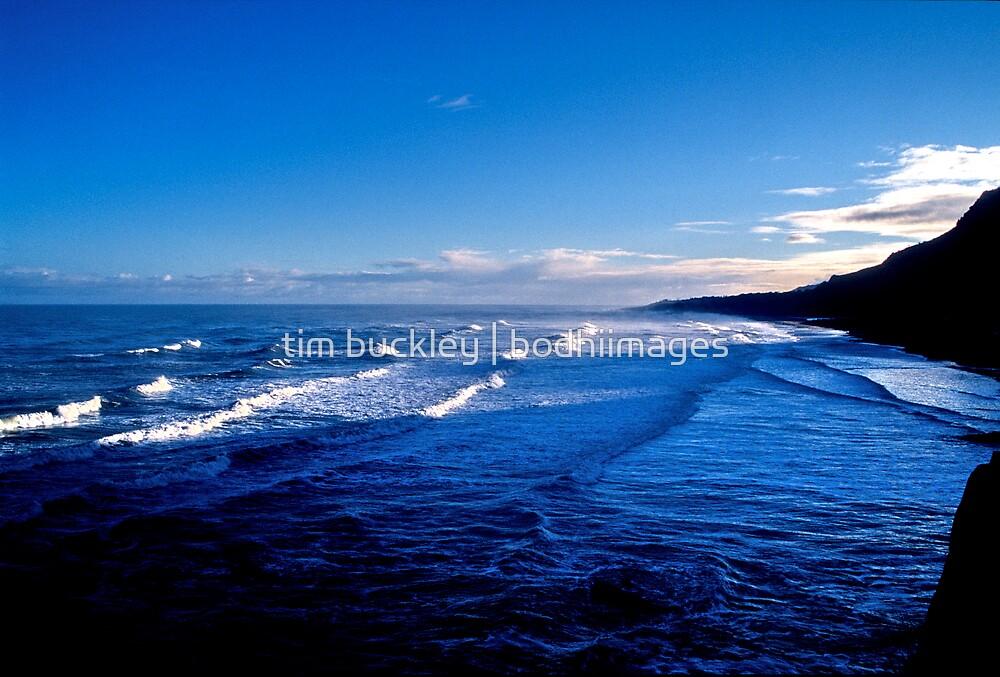 westcoast. south island, aotearoa by tim buckley | bodhiimages