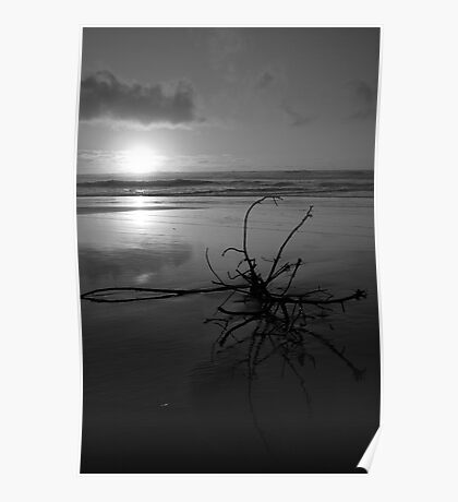 Sunrise in Black and White Poster