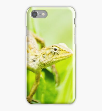 Forest Crested Lizard iPhone Case/Skin