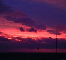 Cottesloe Sunset, violet by mmanni