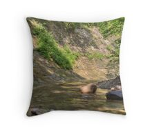 Clifty Creek #8 Throw Pillow