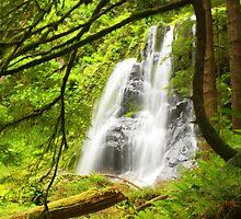 Kentucky Falls by Debbie Roelle