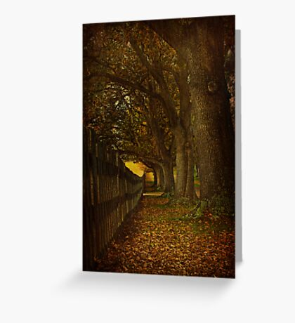 "Let us share a story, you and I, one that begins ""Once upon a time..."" Greeting Card"