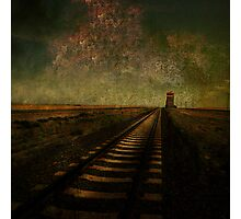 A Long Way Home Photographic Print