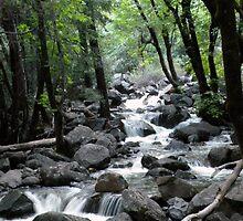 Bridalveil Falls Runoff by Shaina Haynes