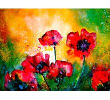 The Rhythm Of Life...Poppies Photographic Print