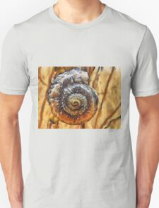 The Perfect Spiral T-Shirt