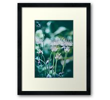 Dream Flower 14 Framed Print