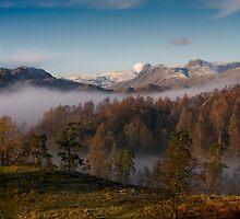 Mountain Mist by Simon Hathaway
