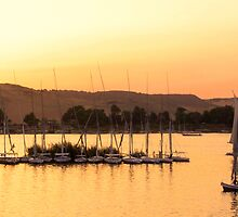 Sunset on the Nile by Maureen Clark