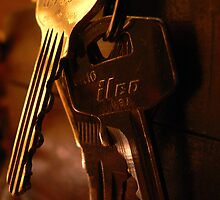 Shiny Keys by Trish Woodford