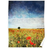 Poppy Fields - Texture Poster