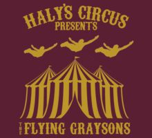 The Flying Graysons by GradientPowell