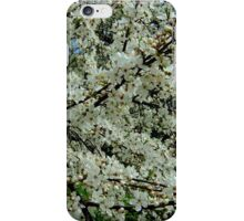 Cherry blossoms time. II iPhone Case/Skin