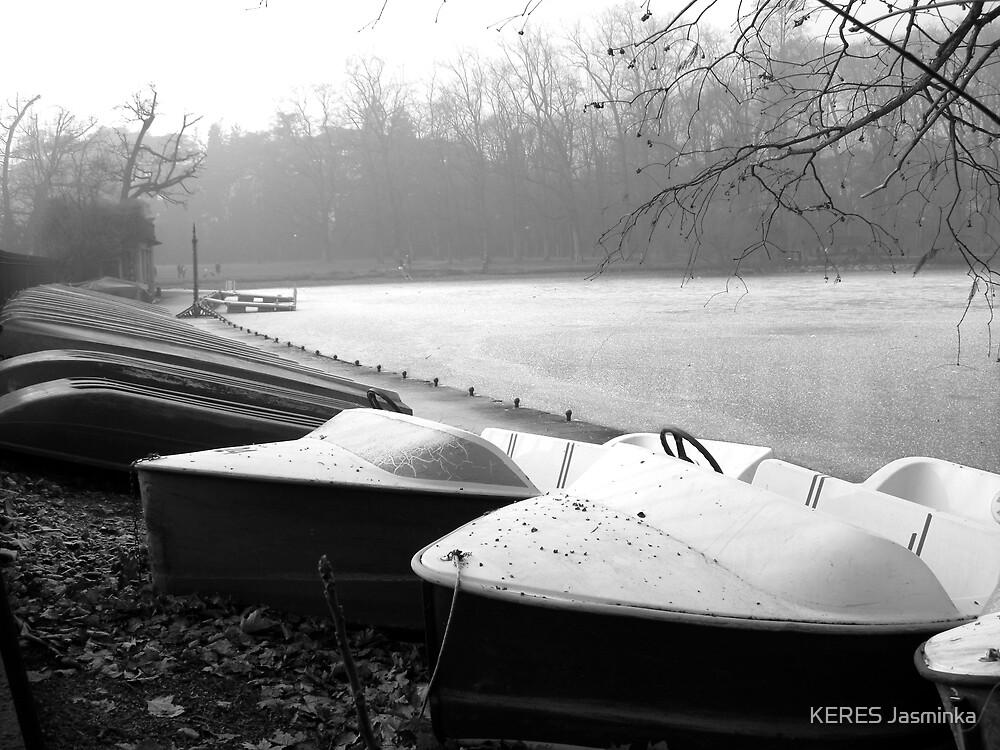 Boats in dry dock, park  Tête d'Or, Lyon, France  by KERES Jasminka