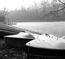 Boats in dry dock, park  Tête d'Or, Lyon, France  by KERES Jasminka