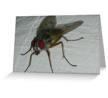 You missed a spot...... Greeting Card