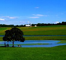 Friendly Farms Country View by Lisa Taylor