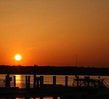 Sunshine by Dean Mucha