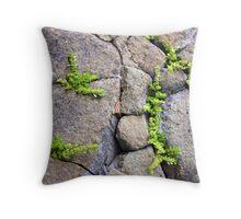 Cracks and Life Throw Pillow