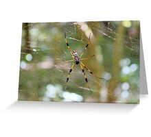 Golden Silk Orb Weaver 2 Greeting Card