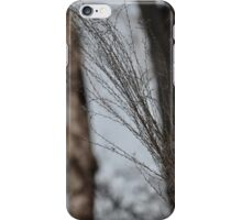 The path of wind 3 iPhone Case/Skin