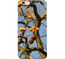 Persimmons iPhone Case/Skin