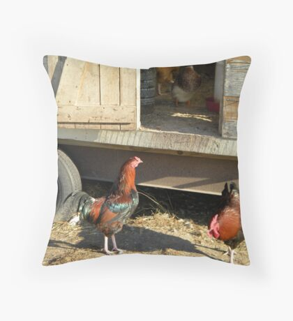 Are we going in here?  Yeah, the duck said so. Throw Pillow