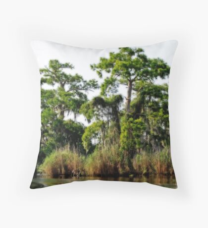 St. Johns Riverbank 3 Throw Pillow