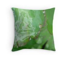 Rain Drop Veil Throw Pillow