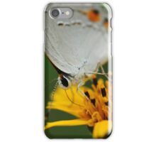Hairstreak Butterfly Macro iPhone Case/Skin