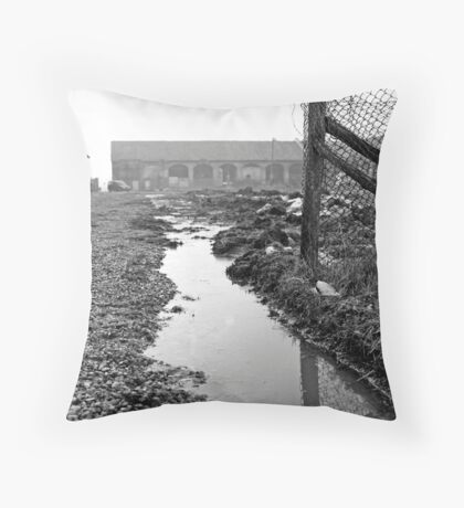 muddy farmyard Throw Pillow
