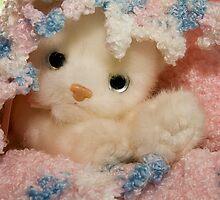 It's A Baby Kitten by Trudy Wilkerson